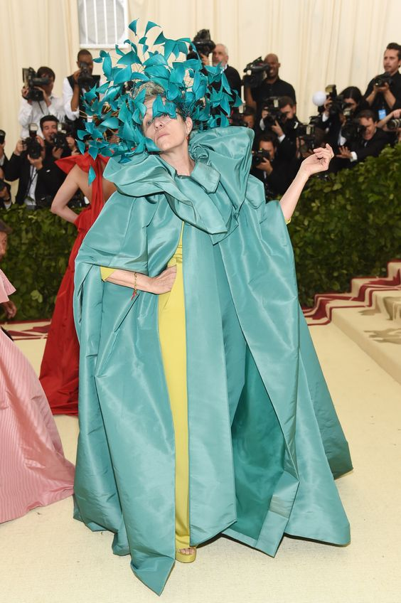 frances mcdormand valentino