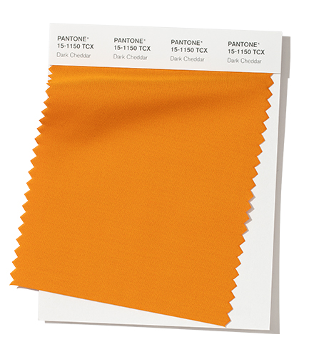Pantone-Fashion-Color-Trend-Report-New-York-Autumn-Winter-2019-2020-Swatch-Dark-Cheddar
